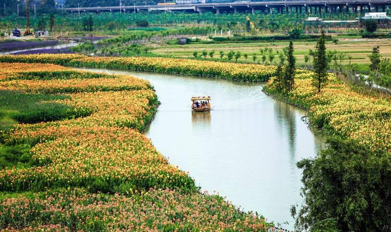 东莞华阳湖湿地公园
