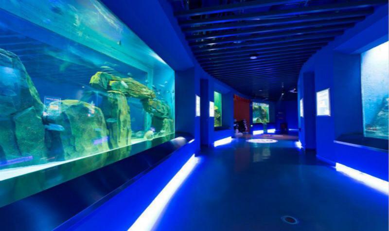 石家庄海洋公园