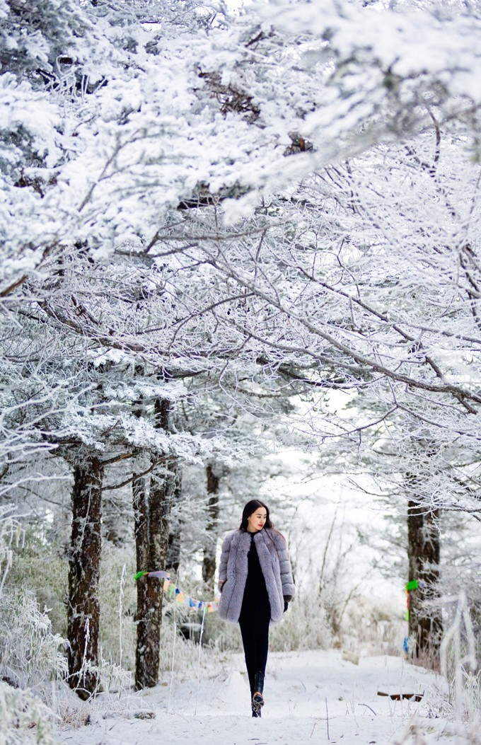 文艺冬天风景图片