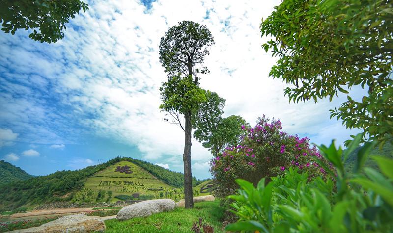 瑞山生态旅游度假村位于大埔县的洲