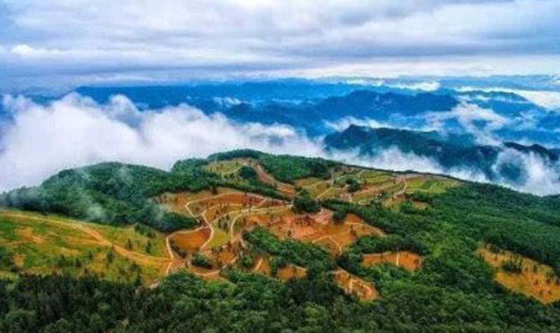 野三关森林花海风景区