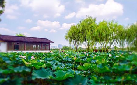 太湖鼋头渚风景区充山门导游部换取门票入园,提前一天预订,电话0510