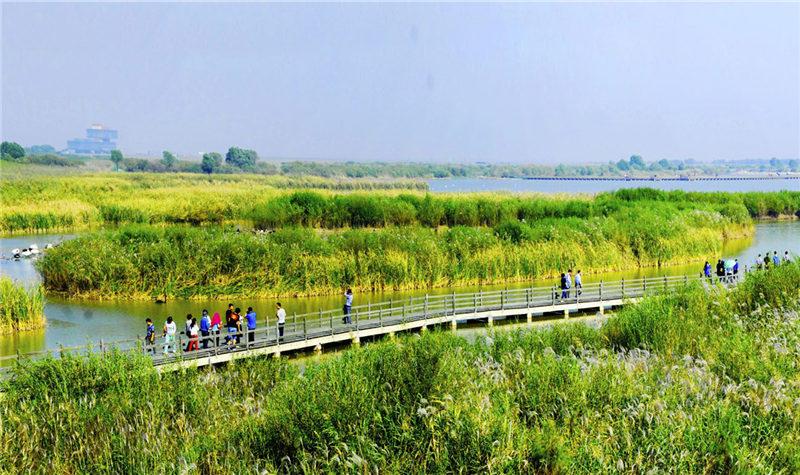 黄河口生态旅游区