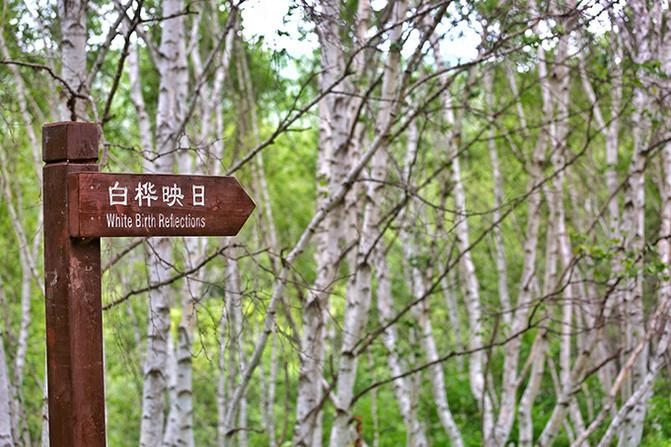 说说这次旅行: 丰宁是距离北京最近的天然大草原,夏季人们理想的度假避暑的胜地。张家口康保县位于河北省最西北部,县境东、北、西三面与内蒙古自治区接壤,南距北京、北距边城二连浩特均为350公里,因为地理位置的原因,这一片区域属于河北省十个深度贫困县中最贫困的县,但康保自然资源丰富,历史上属辽金满蒙民族游牧之地,既有源远流长的胡文化、匈奴文化、蒙古文化的浓厚底蕴,又受汉民族文化的熏陶,其县内的很多地域都属于尚未开发的处女地,这也吸引了众多喜欢小众旅游游客的到来 一、出发前的准备: 1,身份证,学生