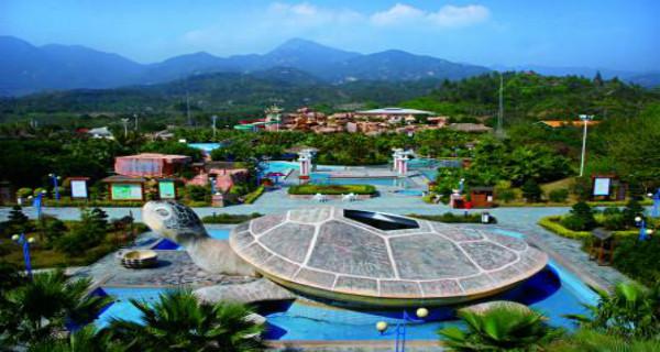 【海边美食游】 惠州惠东三角洲岛 夜泡温泉 海龟岛2天游>2日跟团游