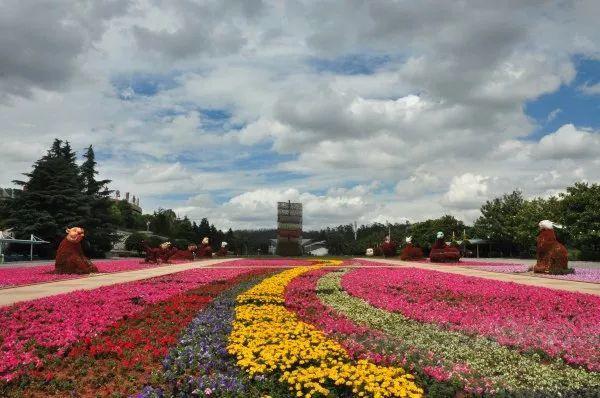 三月的昆明,不止有花,周末一起去世博园重游欢乐的童年!