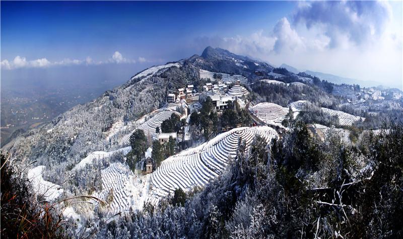重庆永川茶山竹海门票 中国茶山竹海国家森林公园 电子票 自动出票图片