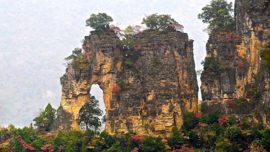 九路寨生态旅游区门票