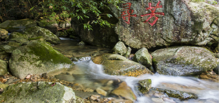 临安神龙川风景区