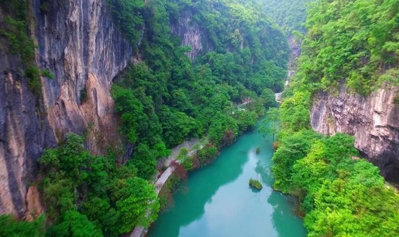 中亚楠木林景区