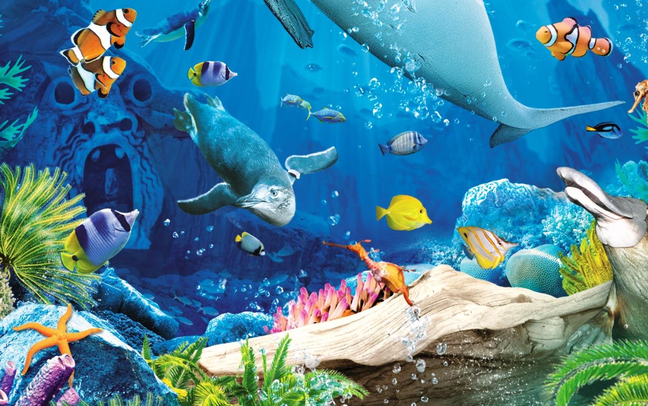 曼利海洋生物保护馆
