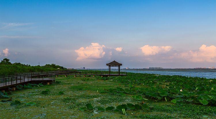莲花岛  由于阳澄湖大闸蟹的日益走红,靠野生的方法已经无法满足市场