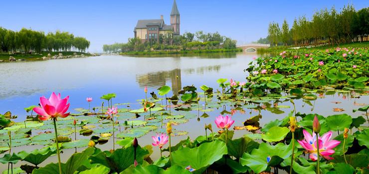 收藏 景点地址:天津市武清区下朱庄镇南湖公园风景区 查看地图 ¥33