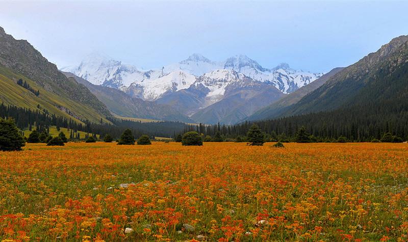 夏塔景区位于新疆省维吾尔自治区伊犁哈萨克自治州昭苏县南70多公里
