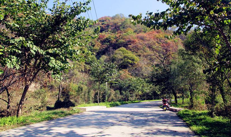 同程首页 景区门票 陕西景区门票 西安景区门票 > 西安祥峪森林公园