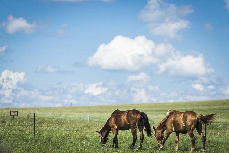 内蒙古 大侠视界|穿越千里草原,遇见未知的自己  乌拉盖九曲湾 从景区