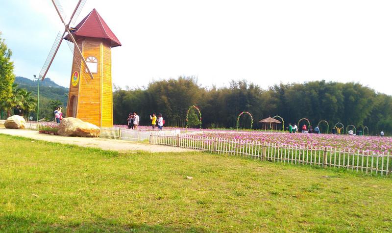 道家沙滩公园