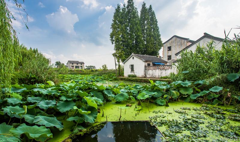 杨柳村古建筑群