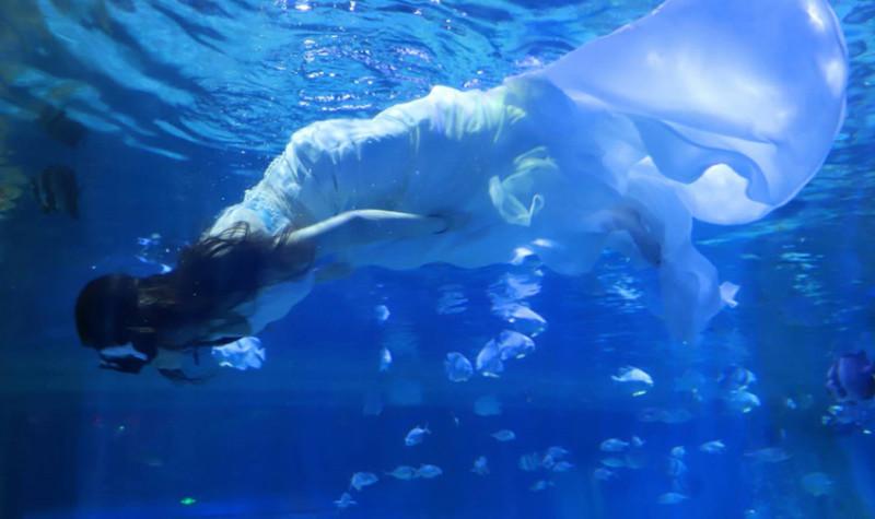 三鲨海洋世界