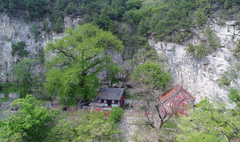 原山白石洞景区