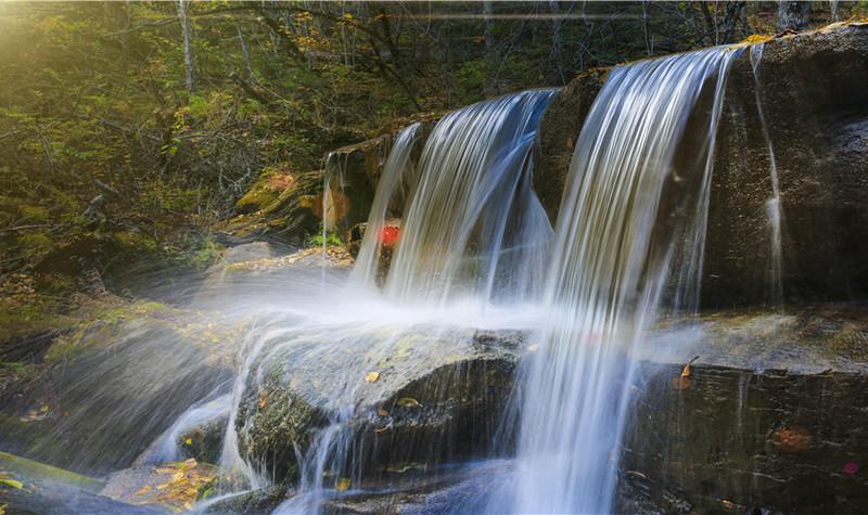 清河原始森林公园