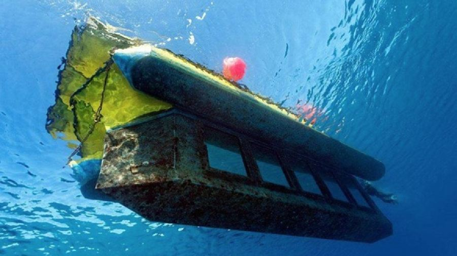 埃及赫爾格達紅海玻璃船出海 欣賞珊瑚魚群體驗(市區酒店接送+水下觀看)