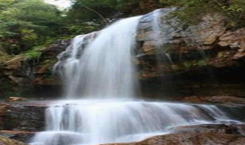 龙岩东肖森林公园