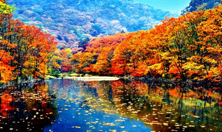 丹东蒲石河森林公园