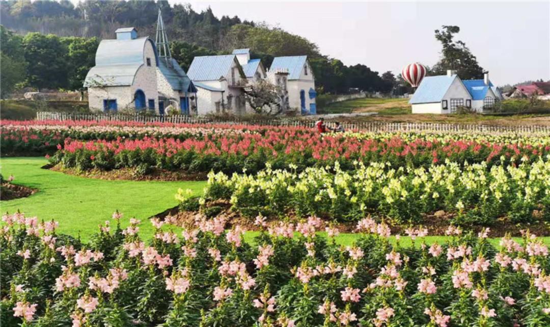 原香国际香草园