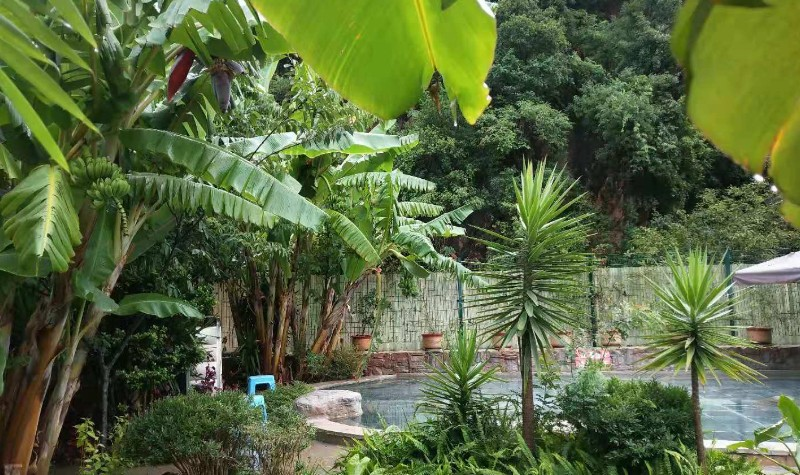 华宁象鼻温泉旅游文化度假区