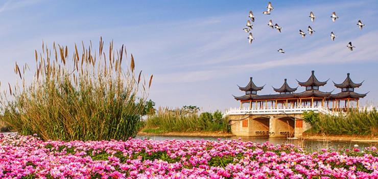 江苏5a旅游景点大全_泗洪洪泽湖湿地门票预订 - 旅游出行
