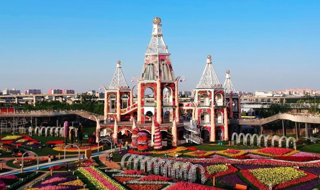 上海浦江郊野公园-奇迹花园