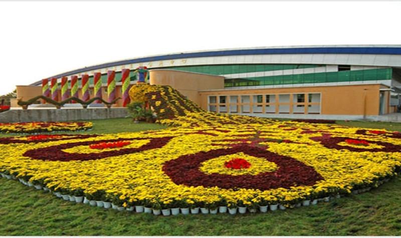 鄢陵国家花木博览园