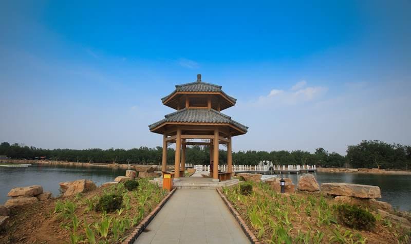 夏津县黄河故道森林公园颐寿园