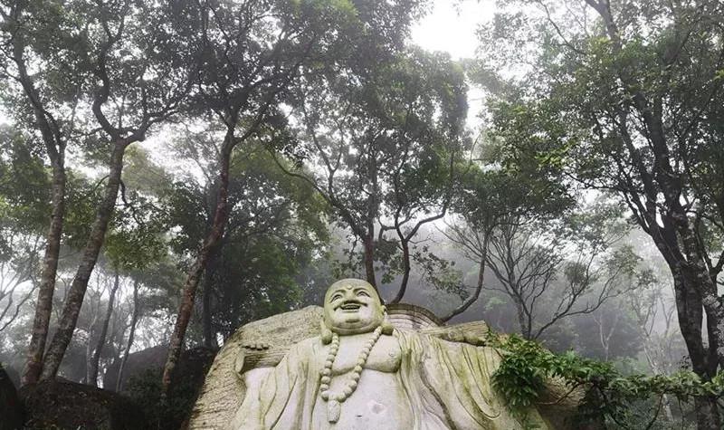 石祖禅茶园