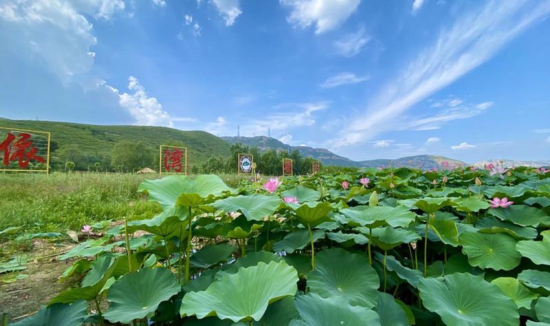 依湾农家风景区
