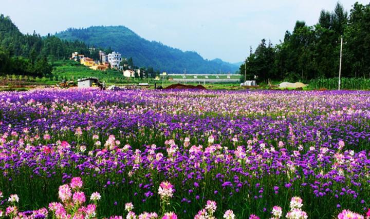 哒啦仙谷旅游景区